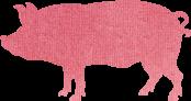 平川サガリ 豚画像