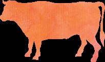 平川サガリ 牛画像